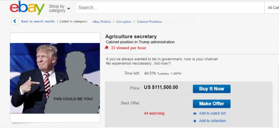 Trump to Auction Remaining Cabinet Positions on eBay